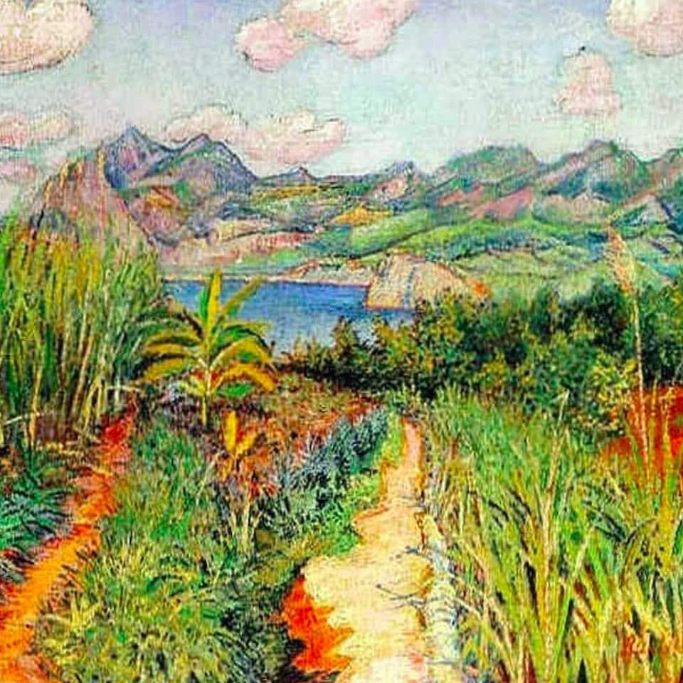 картина остров Огасавара