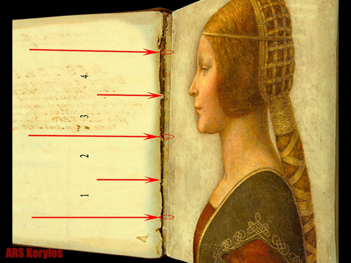 портрет Бьянки Сфорца Леонардо да Вінчі
